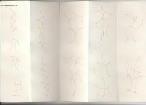 livre des trikhographies pages rouges 13 à  17